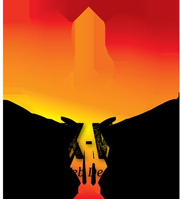 Phoenix-Web-Studio-Wordpress-Website-Design-PHX-AZ